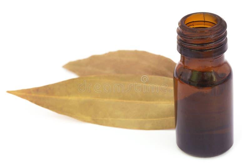 Feuilles de baie avec l'huile essentielle photos libres de droits