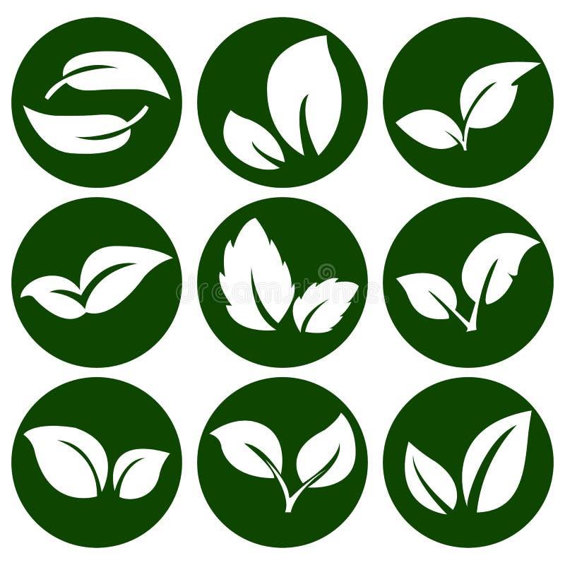Feuilles de blanc sur un bouton vert rond Éléments pour l'eco et les bio logos emblèmes illustration libre de droits