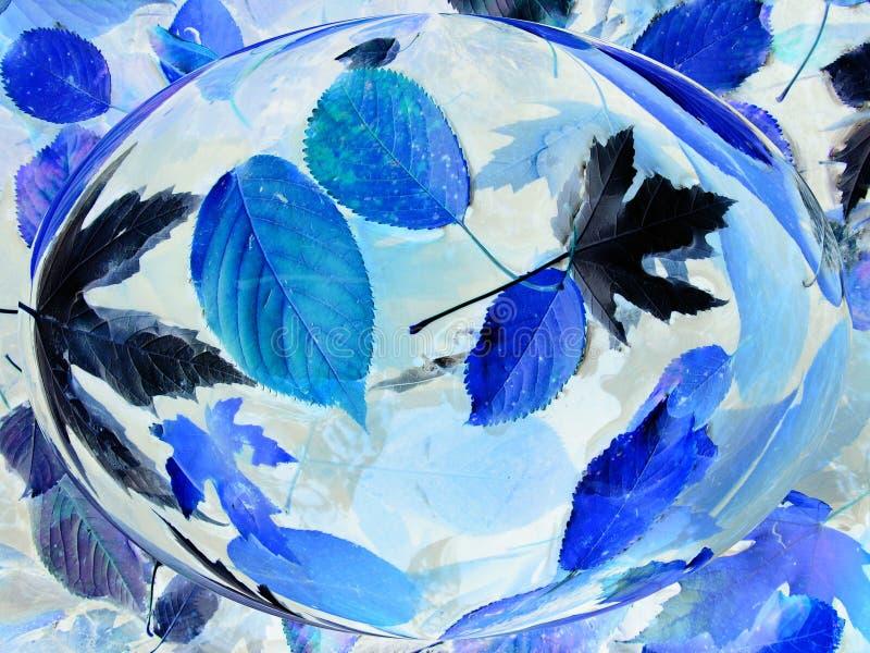 Feuilles de bleu dans la goutte de l'eau image libre de droits