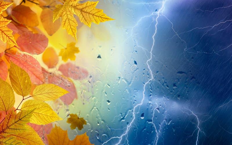 Feuilles de jour d'automne, jaunes et oranges pluvieuses, foudres puissantes photographie stock libre de droits