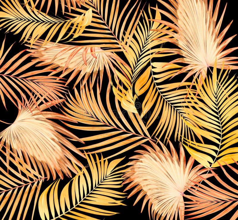 Feuilles de palmier sur le noir images stock
