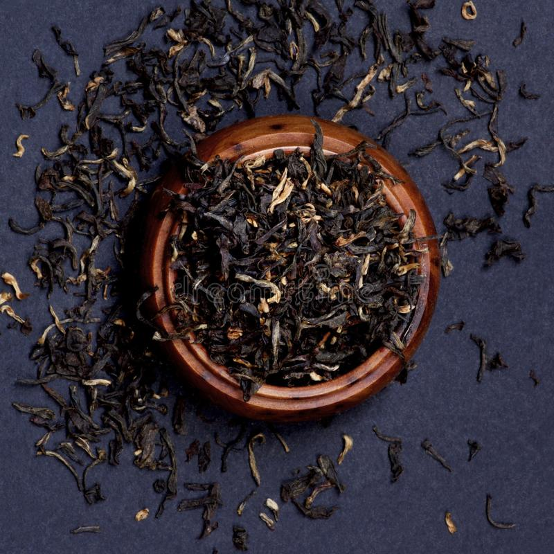 Feuilles de thé d'Assam photographie stock libre de droits