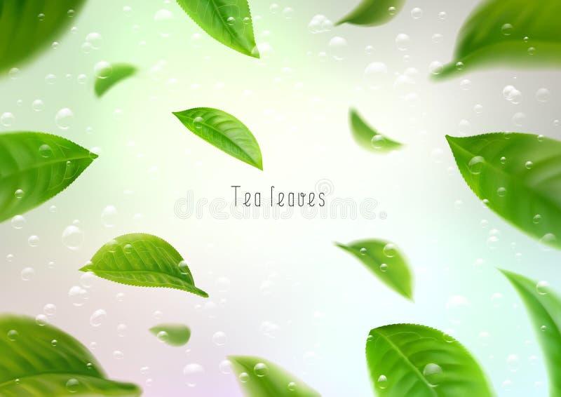 feuilles de thé 3d d'isolement réalistes entourant dans un tourbillon dans l'eau avec des bulles illustration de vecteur