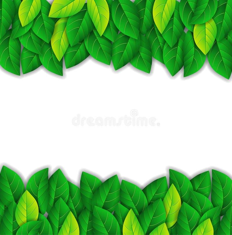 Feuilles de vert illustration de vecteur