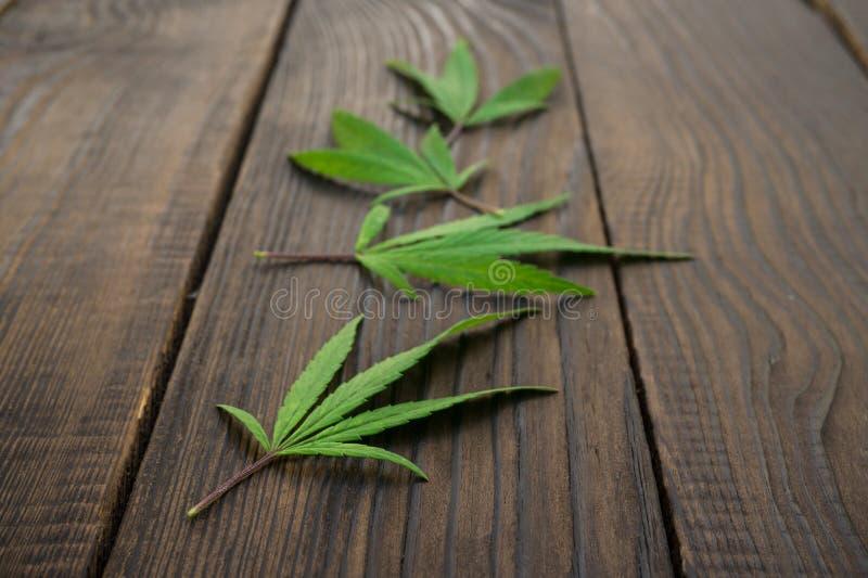 Download Feuilles Des Cannabis Sur La Surface En Bois Foncée Plan Rapproché Photo stock - Image du culture, toile: 77156462