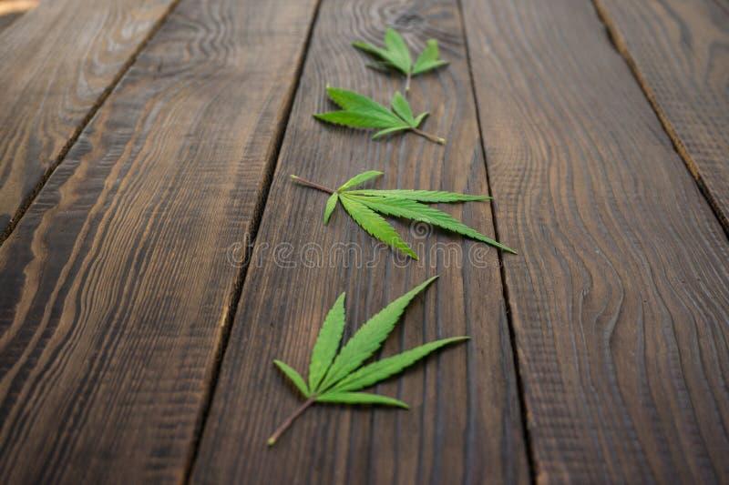 Download Feuilles Des Cannabis Sur La Surface En Bois Foncée Plan Rapproché Photo stock - Image du vieux, toile: 77157822