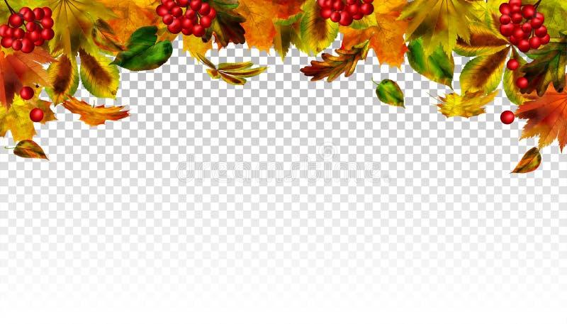 Feuilles en baisse d'automne sur le fond transparent Vecteur illustration de vecteur