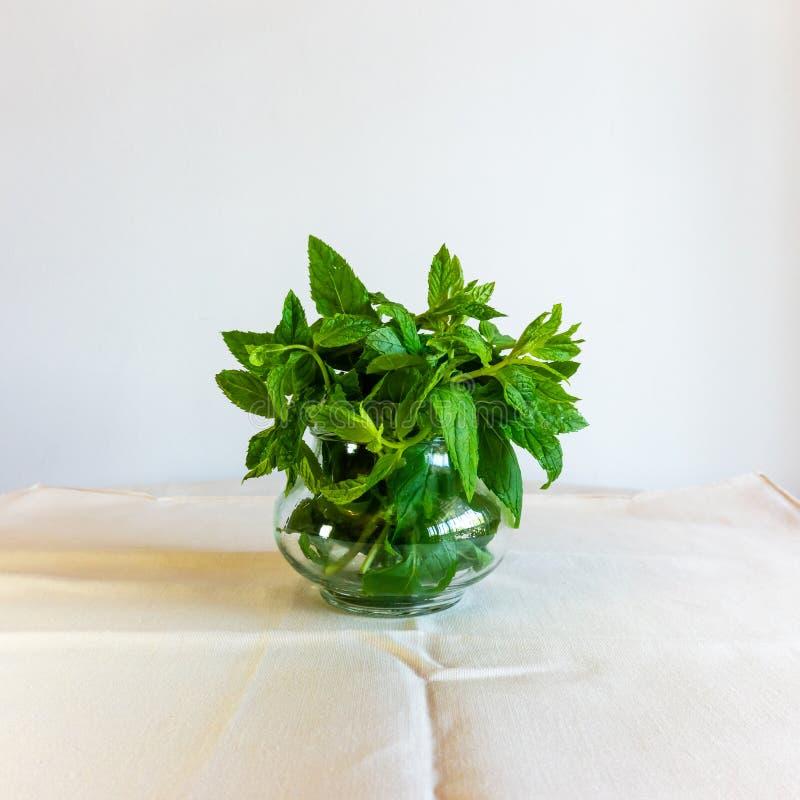 Feuilles en bon état de menthe poivrée dans une tasse en verre sur le fond blanc Herbes fra?ches photo libre de droits