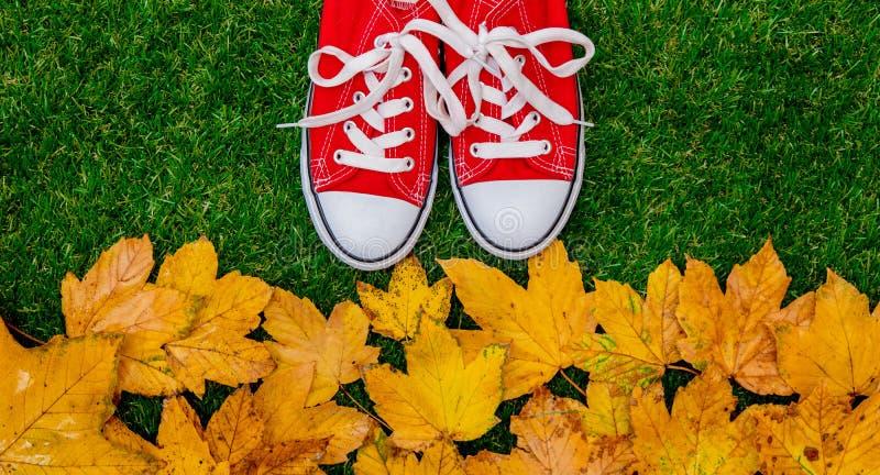 Feuilles et chaussures en caoutchouc d'or d'érable d'automne photographie stock libre de droits