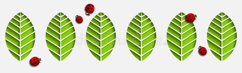 Feuilles et coccinelles de papier de vecteur Dessin 3D géométrique abstrait avec des ombres de baisse Coupé sur un modèle sans co illustration stock