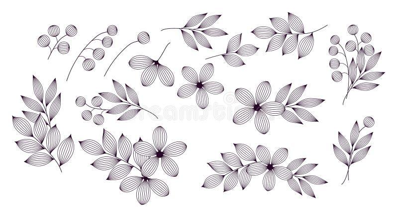 Feuilles et fleurs élégantes noires et blanches avec l'ensemble d'éléments floral de veines, vecteur illustration libre de droits