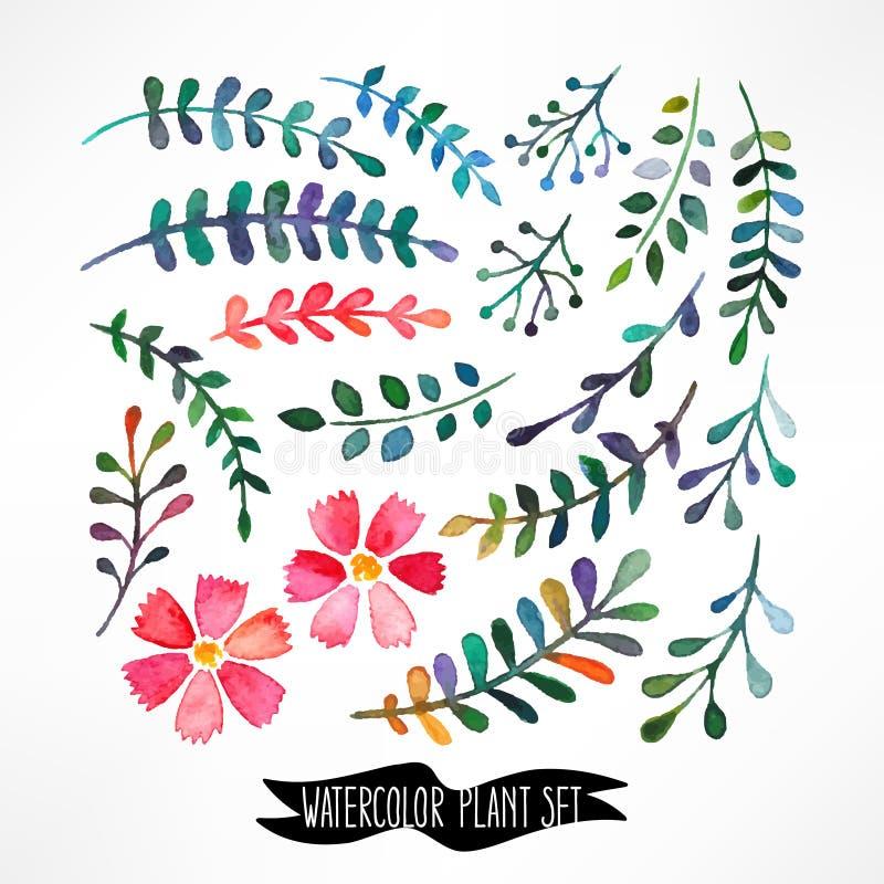 Feuilles et fleurs d'aquarelle illustration de vecteur