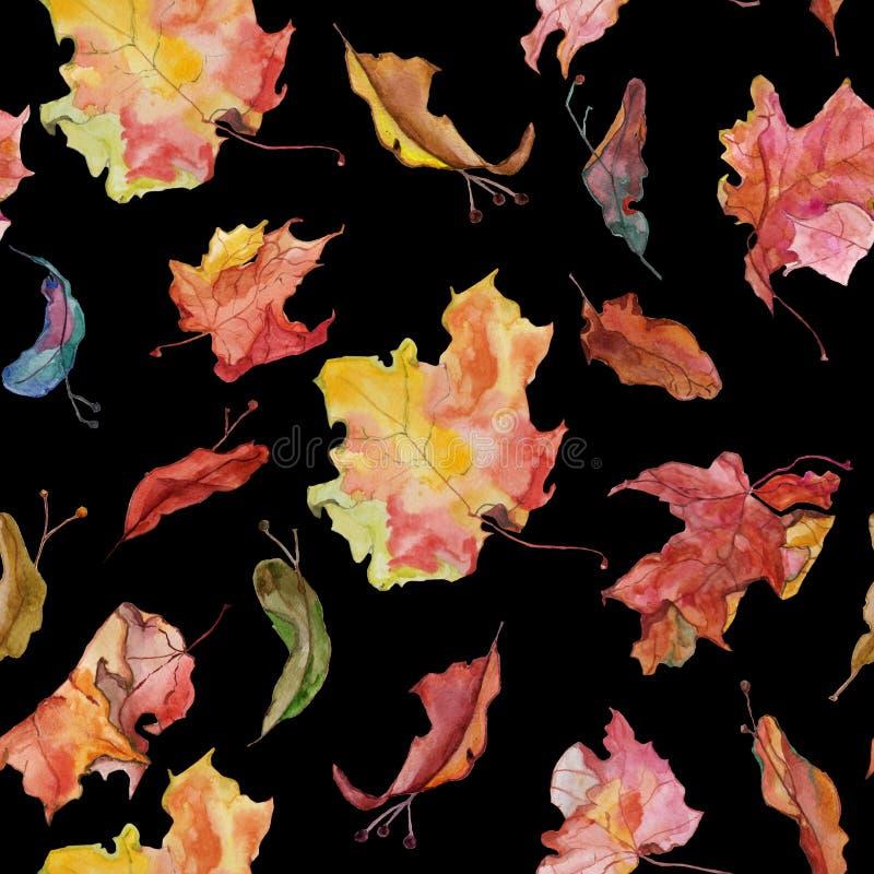 Feuilles et graines d'érable d'aqwarelle d'automne sur le noir illustration libre de droits