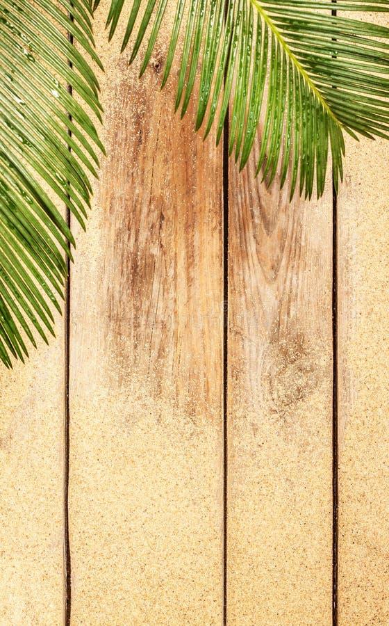 Feuilles et sable de palmier sur le fond en bois photographie stock
