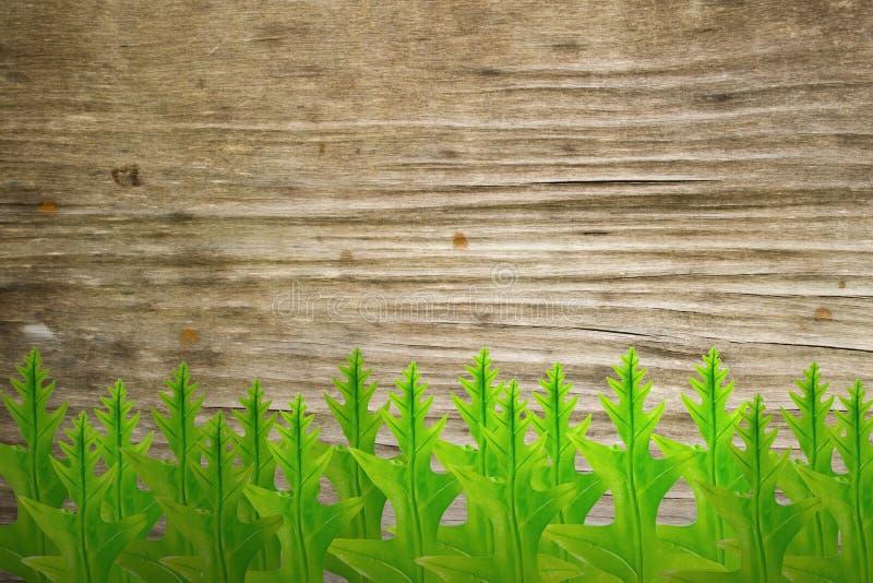 Feuilles et vieux fond en bois photographie stock