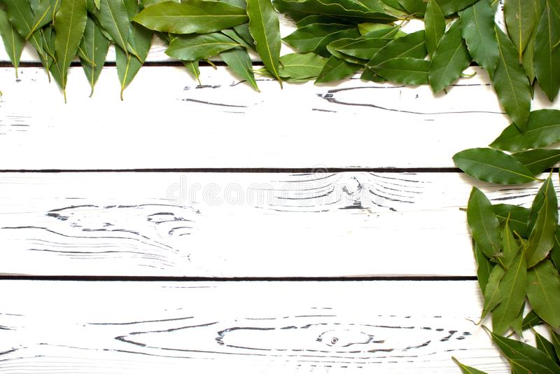 Feuilles fra?ches de Green Bay dispers?es sur un fond en bois blanc photo stock