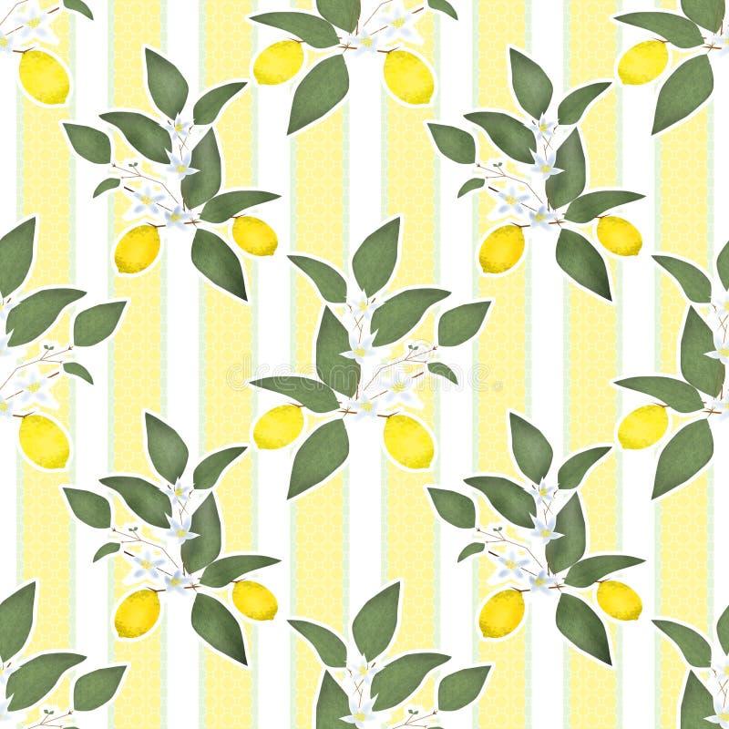Feuilles lemony de modèle sans couture d'agrume de citrons sur rayé illustration de vecteur