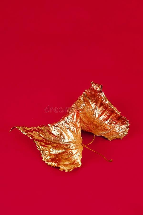 Feuilles sèches d'automne peintes avec la peinture d'or sur le fond rouge Vue sup?rieure trendy Automne d'or photo libre de droits