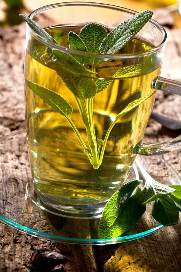 Feuilles sages de thé et de sauge Infusion faite à partir des feuilles sages Officinalis médicinaux de Salvia d'herbe photos stock