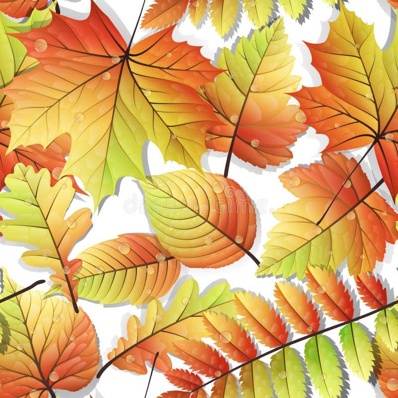 Feuilles sans couture d'automne coloré d'isolement ENV 10 illustration stock