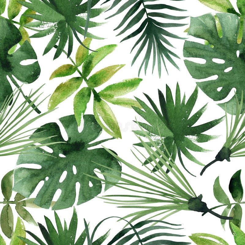 Feuilles tropicales d'aquarelle sans couture illustration stock