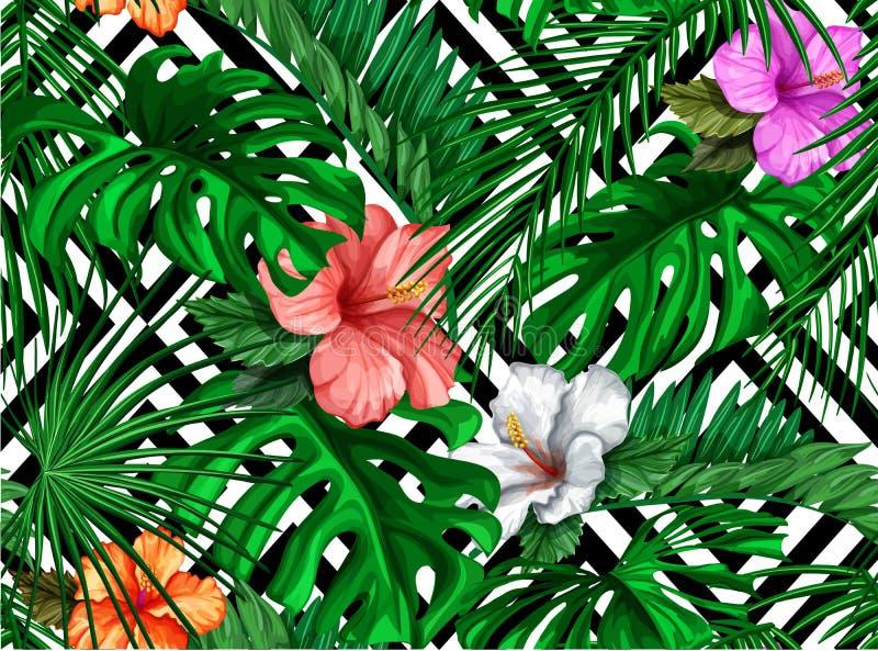 Feuilles tropicales de vecteur, modèle sans couture de ketmie illustration stock