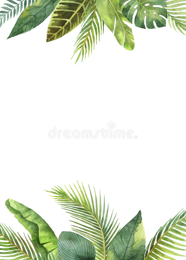 Feuilles tropicales et branches de cadre rectangulaire d'aquarelle d'isolement sur le fond blanc illustration de vecteur