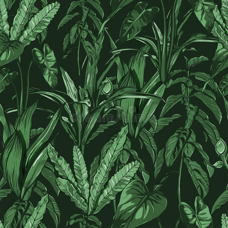 Feuilles tropicales, jungle dense Sans couture, peint à la main, modèle Fond de vecteur illustration de vecteur