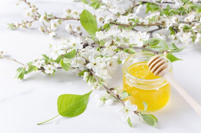 Feuilles vertes, bouquet des pétales blancs de ressort, fond floral Miel et plongeur de miel sur la surface blanche photographie stock