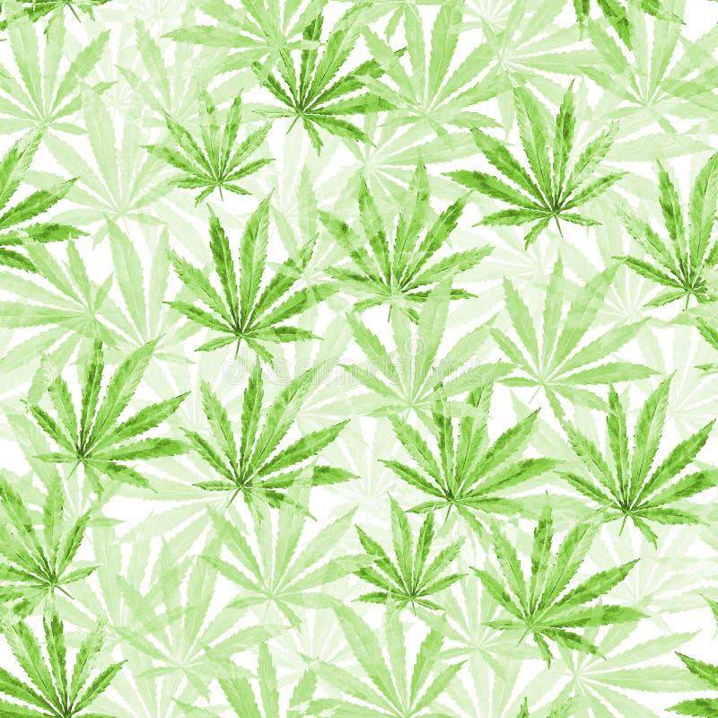 Feuilles vertes de cannabis sur le fond blanc illustration libre de droits