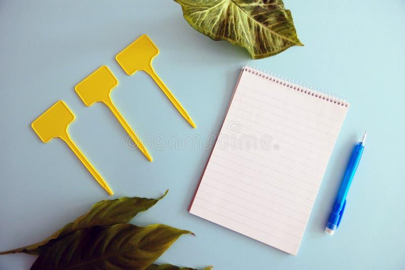 Feuilles vertes fraîches, carnet vide, labels jaunes et un stylo bleu d'isolement sur un fond clair bleu photographie stock