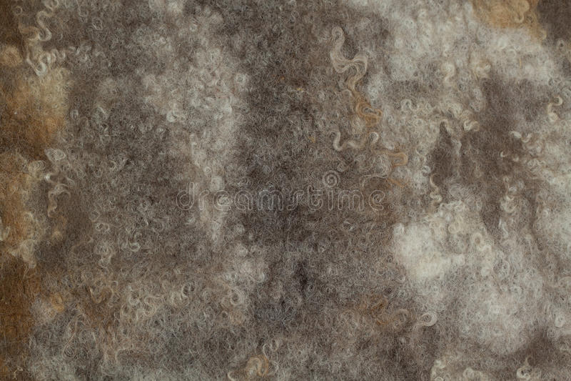 feutre Brown-gris photos libres de droits
