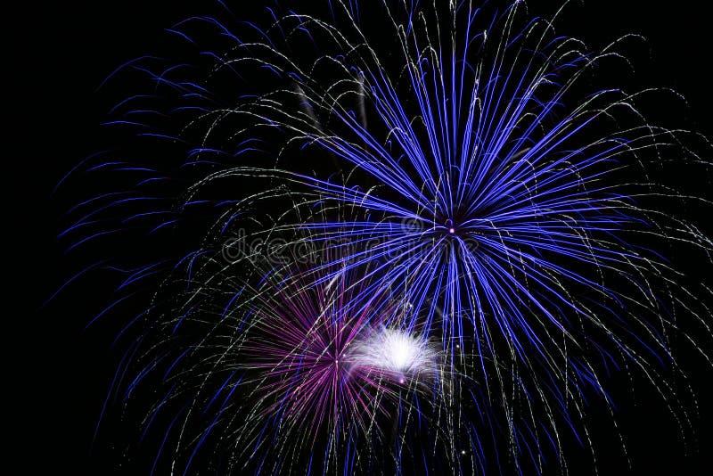 Feux d'artifice bleus lumineux photo libre de droits