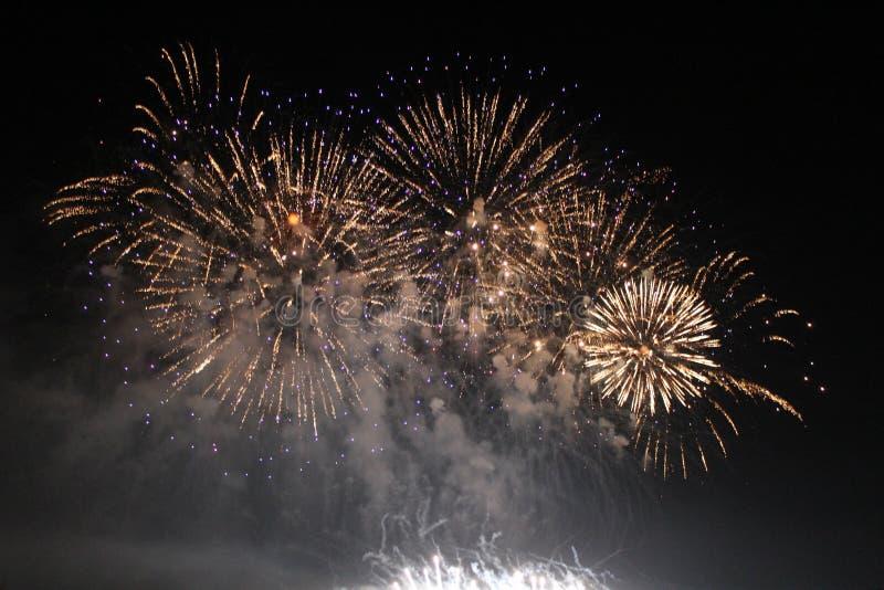 Feux d'artifice colorés lumineux de nuit de feux d'artifice image libre de droits
