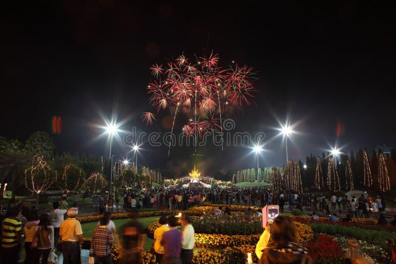 Feux d'artifice dans l'anniversaire de vacances de nouvelle année image libre de droits