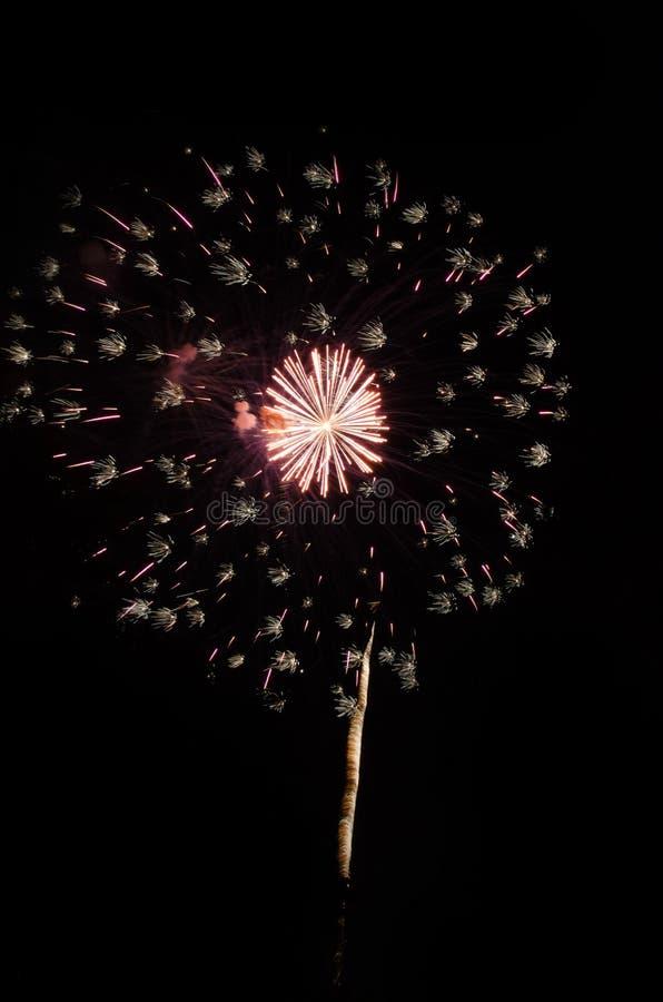 Feux d'artifice de explosion dans le ciel nocturne photo libre de droits