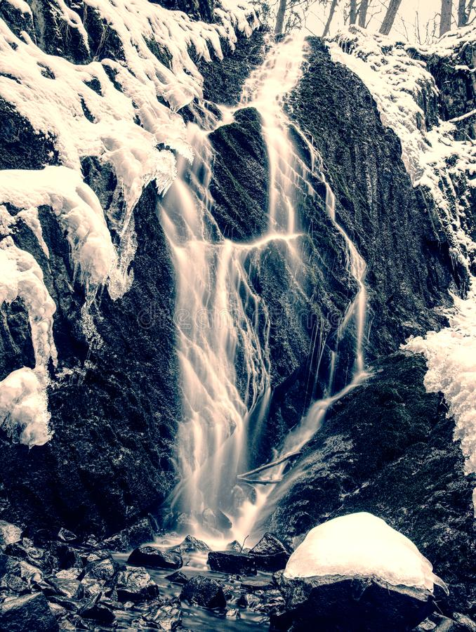 Few frozen waterfalls which are in nearly original condition. And not full used for generating water energ, basalt, rock, winter, tree, stream, -, flowing, snow royalty free stock photo