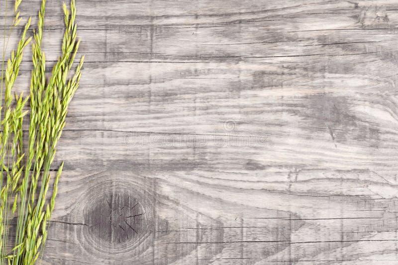 Few ostrza trawa na starej szarej drewnianej desce zdjęcia stock