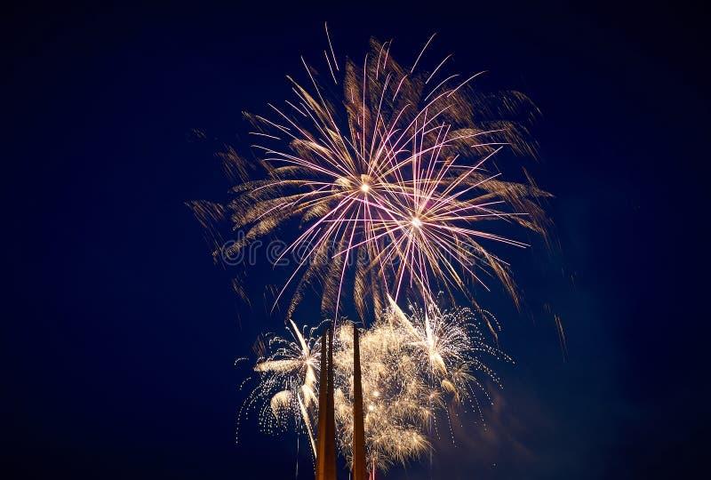 Few salwy piękni świąteczni fajerwerki w nocnym niebie, kolor żółty zdjęcia stock