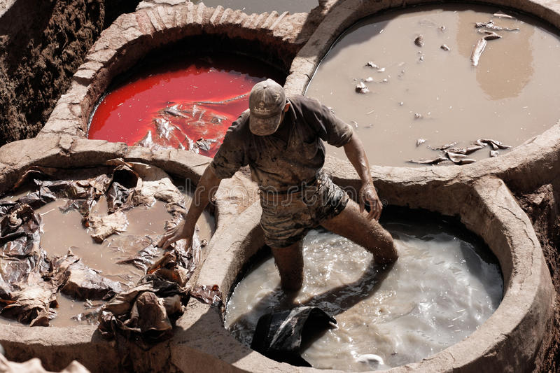 Fez, Morocco ancient leather tannery with man working stock images