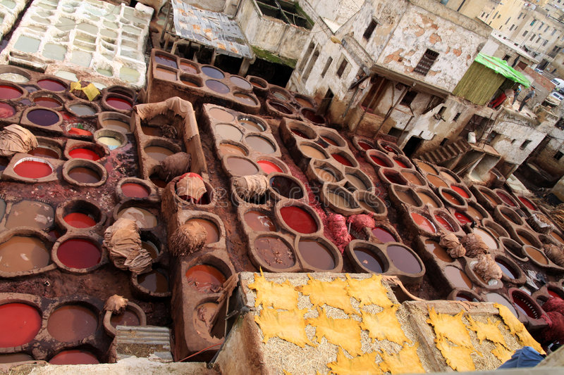 fez tannery arkivfoto
