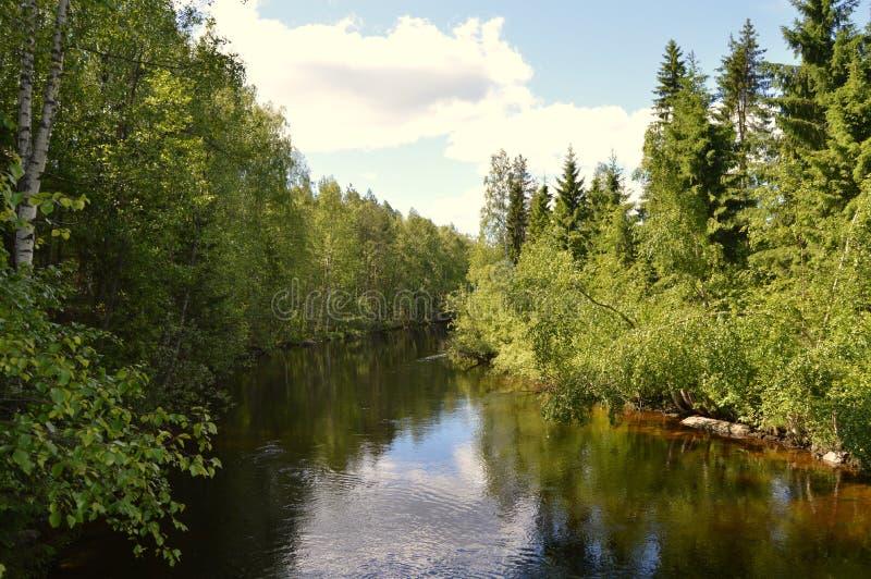 Fiński lato, Pihtipudas zdjęcia stock