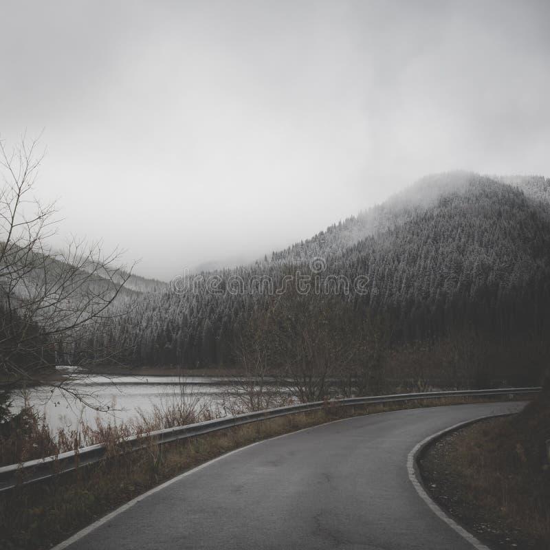 Fi zimy przyglądająca scena z przygnębiającą atmosferą obraz stock