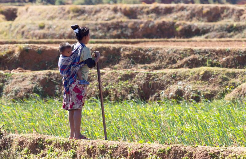 Woman with child working on a field in Madagascar. Food for over 25 million Malagasy royalty free stock photos