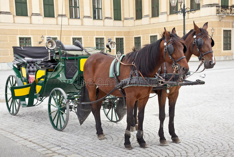 Download Fiaker stock image. Image of park, carriage, fiaker, historical - 24517301
