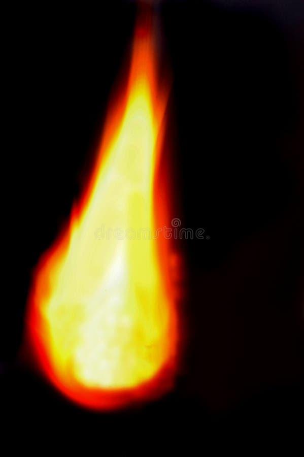 Fiamma calda fotografia stock