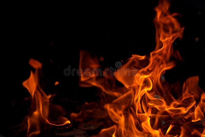 Fiamma del fuoco della fiammata su fondo nero fotografia stock