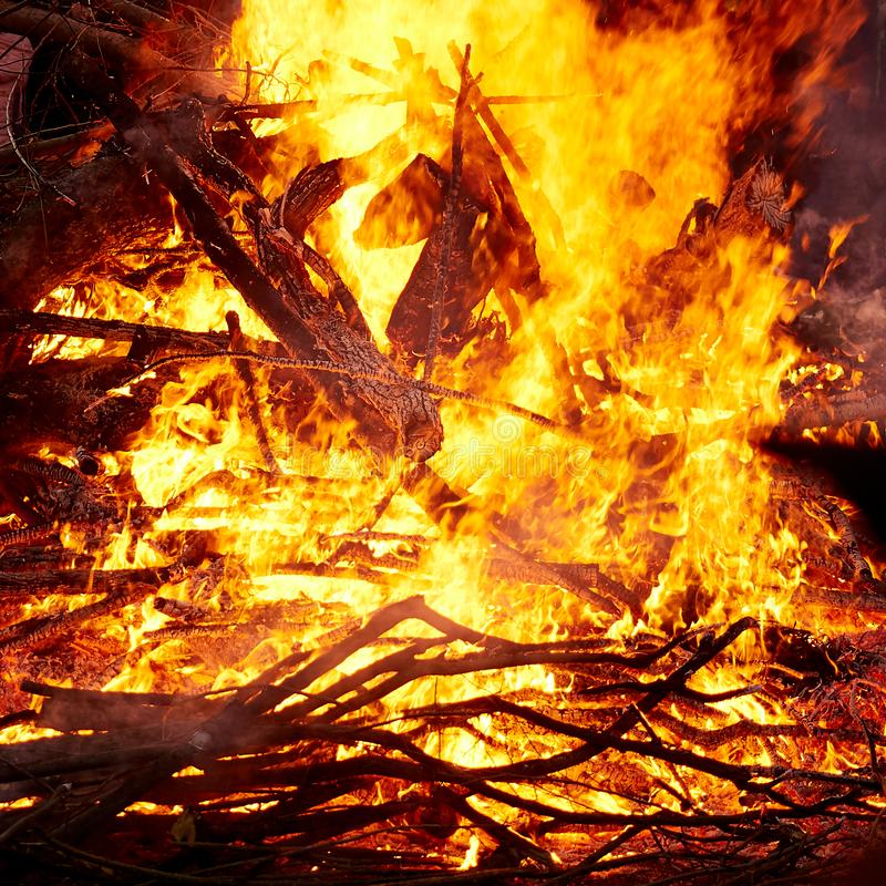 Fiamma di un falò bruciante alla notte fotografie stock libere da diritti