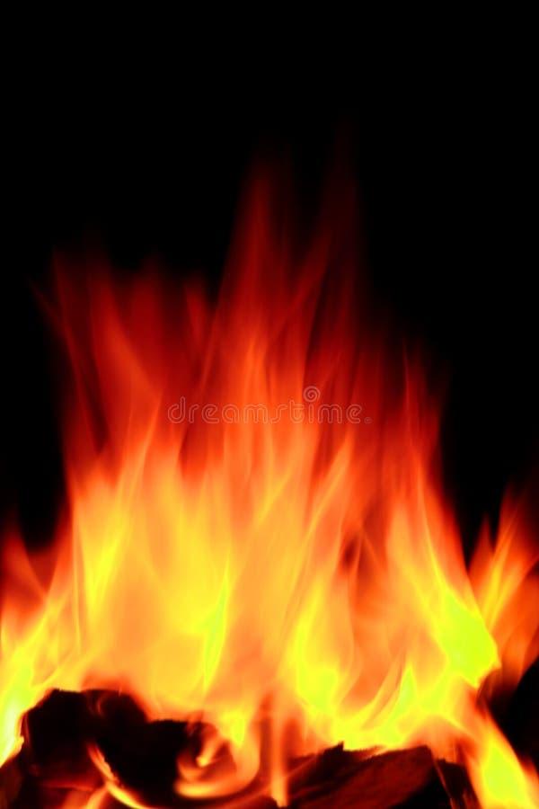 Fiamme aperte calde del fuoco fotografia stock