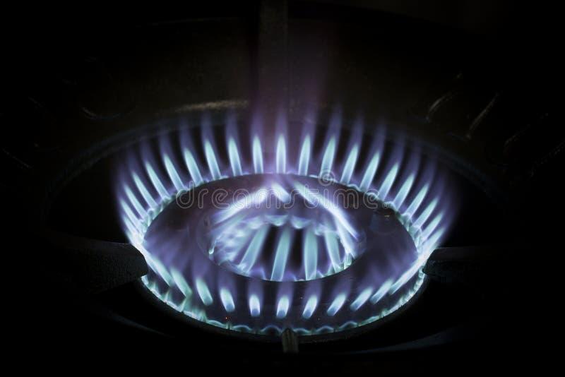 Fiamme blu di a gas fotografia stock